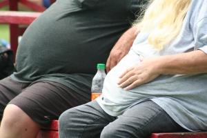 fedme_og_BMI_origin_3829063385