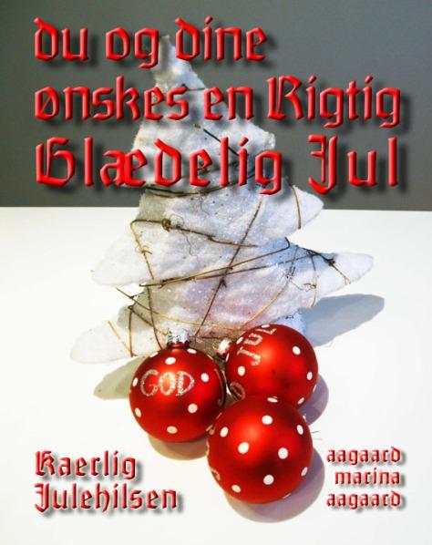 Glædelig Jul Julekort foto Marina Aagaard