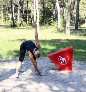 Trim_4_torso_swing_outdoor_fitness_circuit