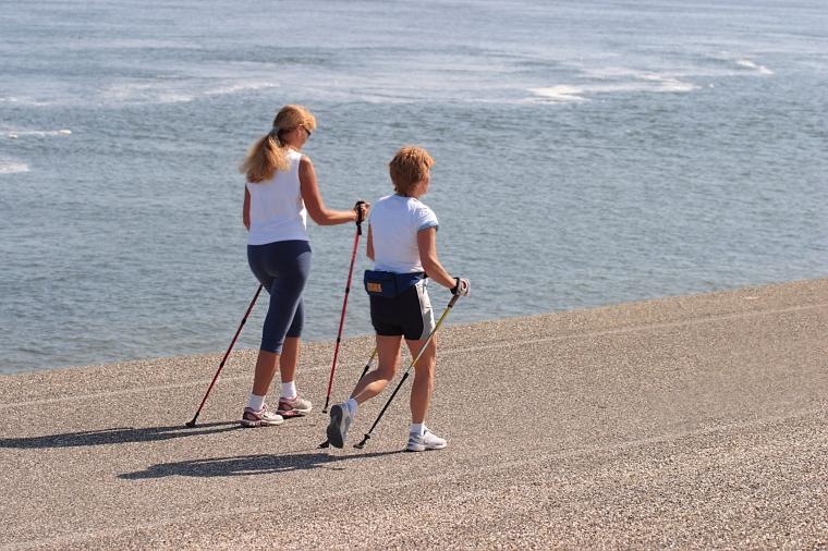 Anbefalinger og definitioner på fysisk aktivitet og motion Fitness bog Foto af Lidian Neeleman