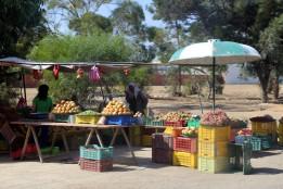 Tunesien Frugtsalg langs vejen 2