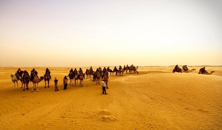 Tunesien_Sahara_kameltur