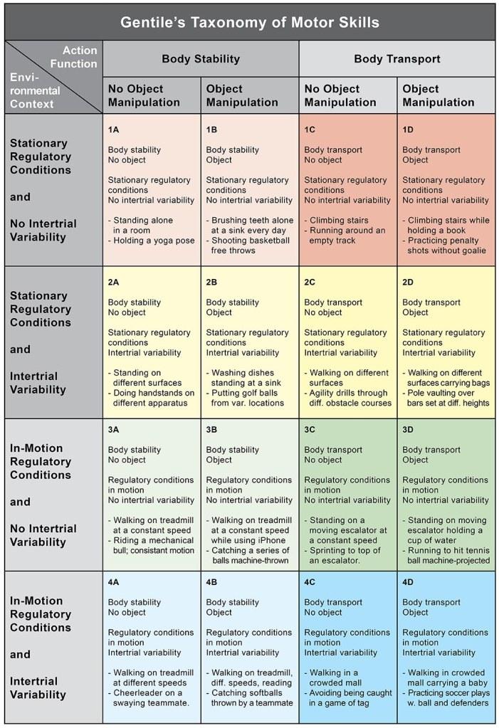 Motor_Leaning_Gentiles_Taxonomy_of_Motor_Skills_Marina_Aagaard_fitness_blog
