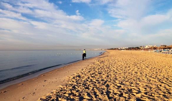 Tunesien Ridning på stranden w