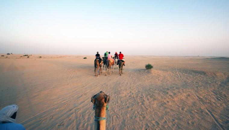 Tusien Sahara udsigt fra kamelen w