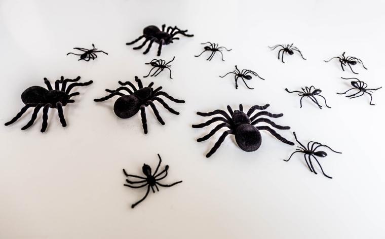 Spider_figures_close_up_Marina_Aagaard_fitness_blog