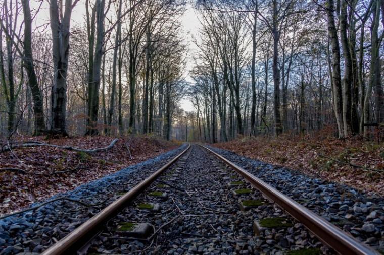 Rosenholm_skov_jernbanespor_Marina_Aagaard_blog