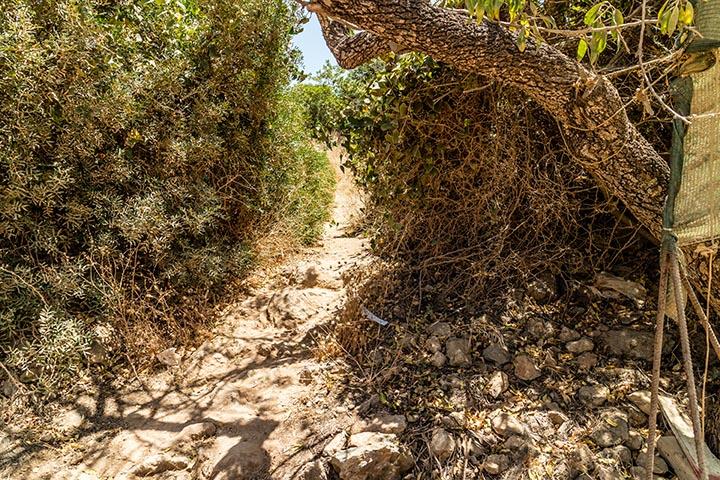Algarve_OLitoral_IMG_1876-1