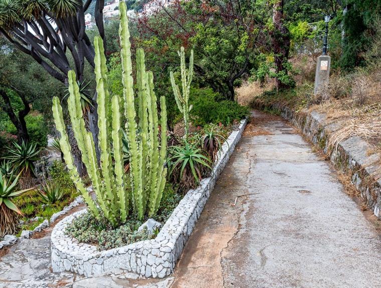 The_Alameda_Gibraltar_Botanical_Gardens_Cactus_Marina_Aagaard_blog