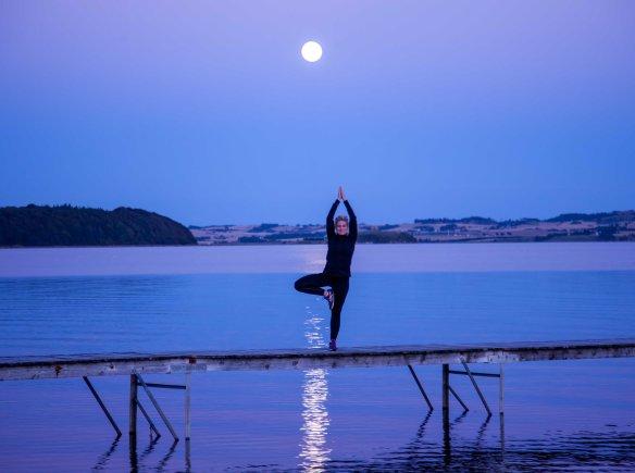Yoga_tree_photo_Henrik_Elstrup_Marina_Aagaard_blog