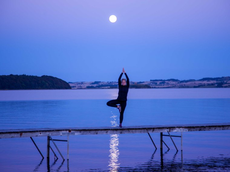 Yoga_tree_photo_Henrik_Elstrup_Marina_Aagaard_blog