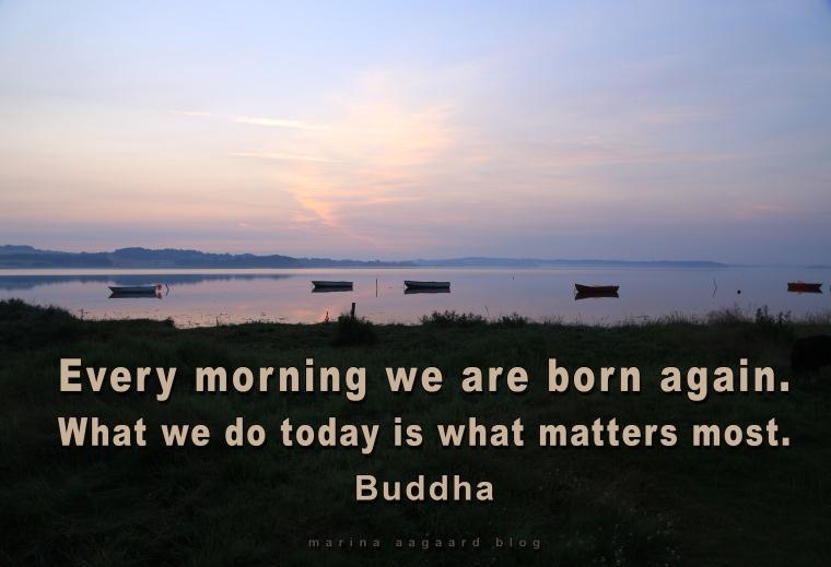 Motivation_Every_morning_we_are_born_again_Marina_Aagaard_blog